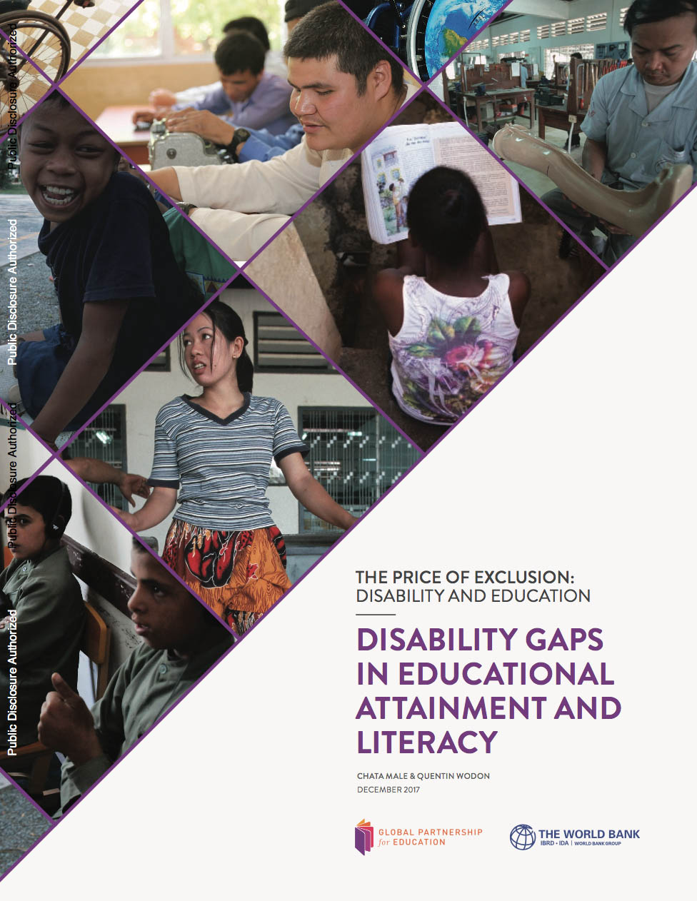 Cover Page Disability Gaps in Educational Attainment and Literacy
