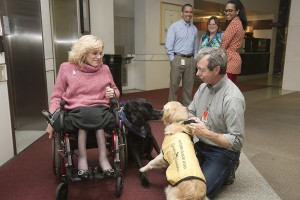 Guide dogs Memphis and Donna meet during the NRC-sponsored Combined Federal Campaign Charity Fair during which federal workers learn about community charities. Pictured (left to right) NRC staff member Trish Gallalee and Memphis, her guide dog, and Dave Gill, Guide Dog Foundation for the Blind, and Donna, his training service dog. Looking on in the background are NRC CFC campaign manager Reinaldo Picón-Colón, Leigh Trocine and Deirdre W. Spaulding-Yeoman