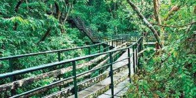 Thenmala Eco-tourism Promotion Society (Photo| Thenmala Eco-tourism website)