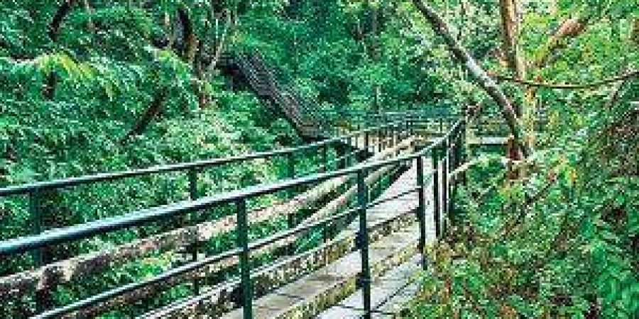 Thenmala Eco-tourism Promotion Society (Photo| Thenmala Eco-tourism website)