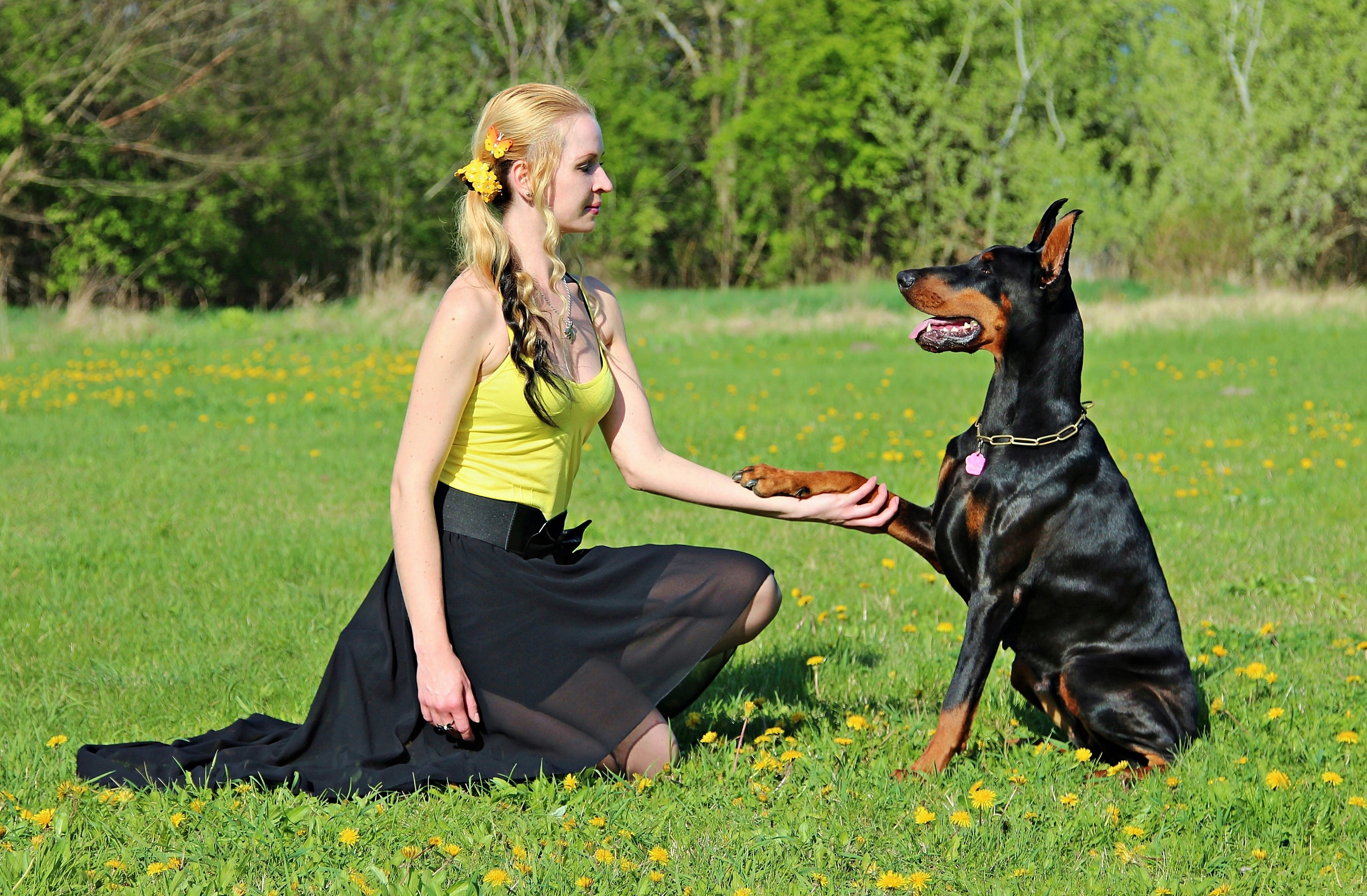 girl kneeling while holding sitting dog's paw
