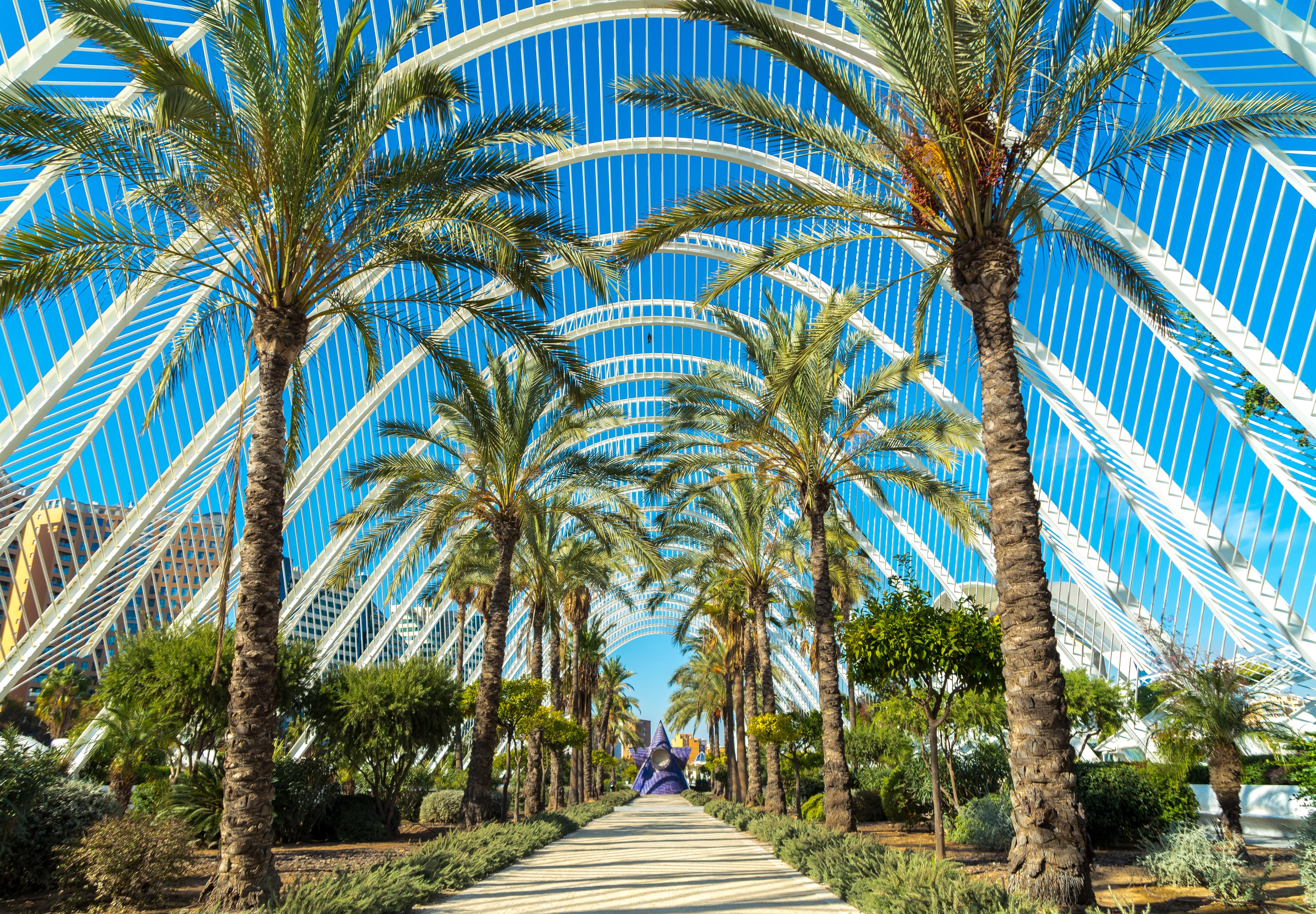 Ciudad de las Artes y las Ciencias, València, Spain